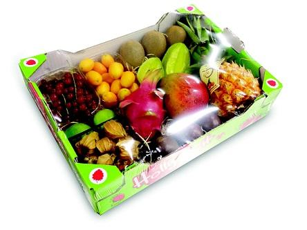 Create your own Exotic box with aa large selection of fruit, like Mango's, pitahaya, Kumquat, Kiwi's and much more!