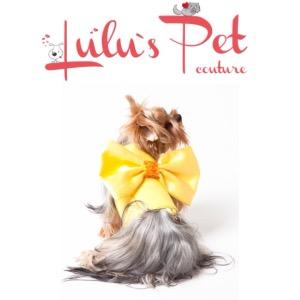 Lulu's Pet Couture design dog clothes