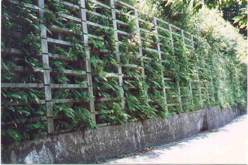 Muri cellulari a Gabbia - Serie Griglie Spaziali