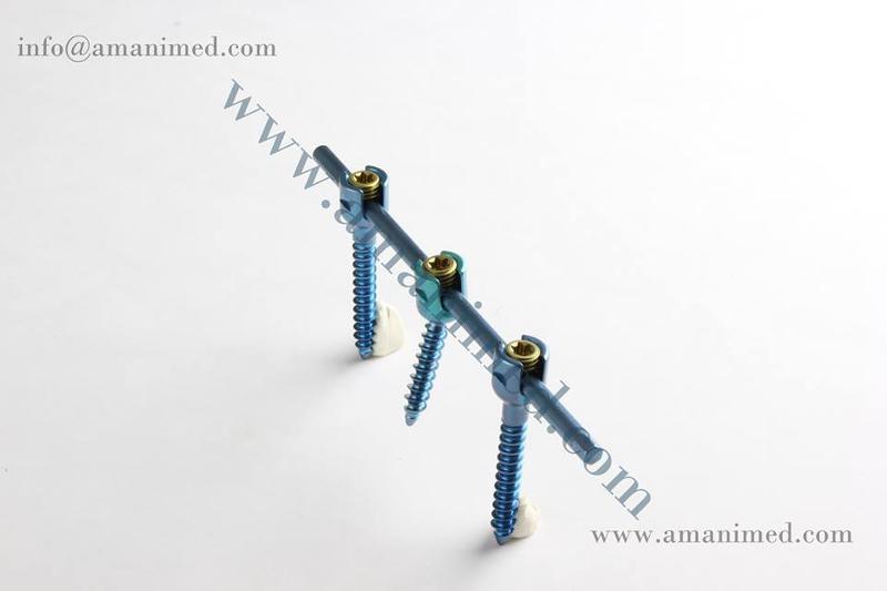 Spine screw with Rod