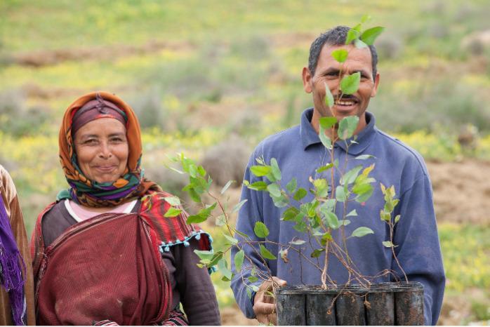 Tunisian Naturals