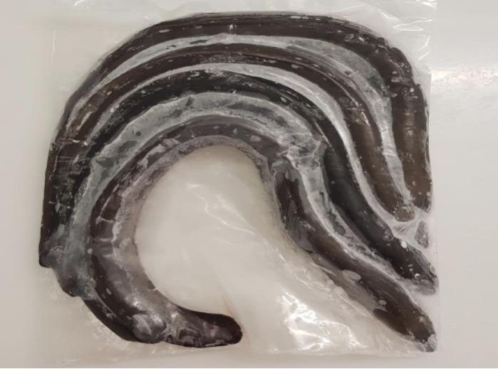 dondurulmuş yılan balığı