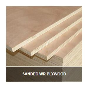 Sander WR Plywood