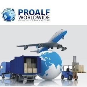 Dedicated professionals specialised in FTL/LTL as well as FCL/LCL, rail or air deliveries throughout Romania and Europe