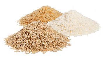 Linee di riso