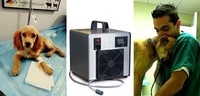 Impianti ad ozono per sanificazione di ambulatori veterinari per l'eliminazione di odori sgradevoli e per assicurare l'eliminazione delle infezioni nosocomiali.