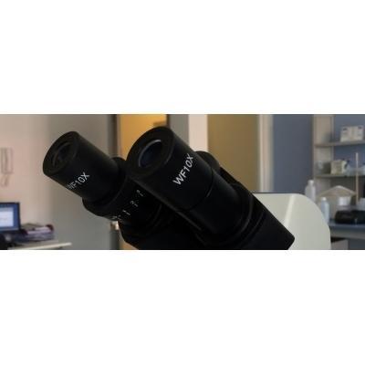 Laboratorio Analisi Bios 77ANALISI MICROBIOLOGICHE