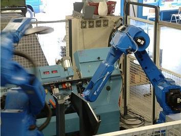 multi-tasking robots
