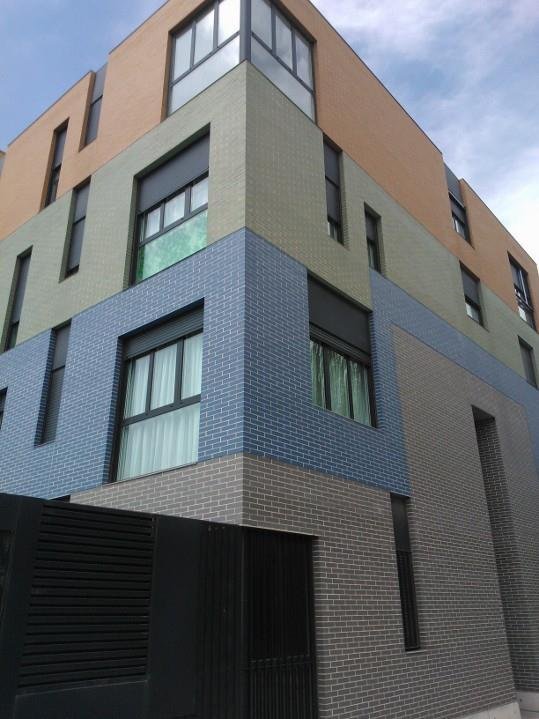 Special coulored bricks