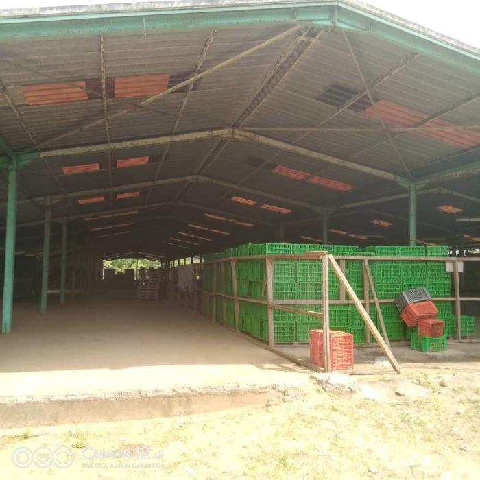 Station de conditionnement production agricole Côte d'Ivoire