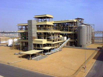 Edible Oils & Fats Production Plants construction