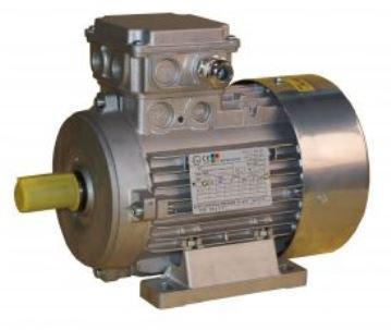 Explosionsgeschützter Motor - der richtige Schutz in gefährdeten Bereichen (ATEX)