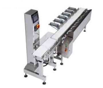 Auto Weight Sorting System