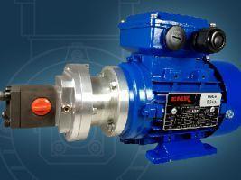 Motorpumpe mit Magnetkupplung