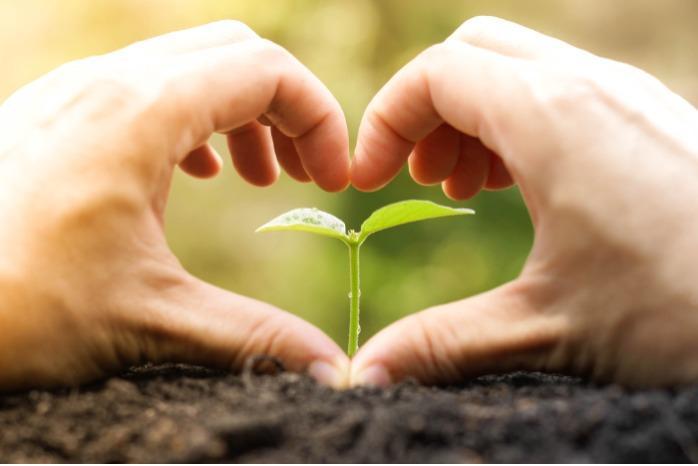 Benefert - beneficial fertilizers