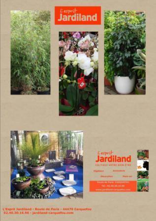 Location de plantes d'intérieur et d'extérieur pour vos événements : Salon , exposition, mariage , ...Venez choisir vos plantes en magasin pour obtenir un devis.