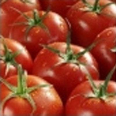 ORTOFRUTTA DI FAPANNI BRUNO GALLERIA, verdure fresche all'ingrosso