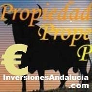Venta de fincas de cultivo y caza en España: Aguacates, olivos, hortalizas. Grandes y pequeñas extensiones, cortijos, grandes fincas y cotos de caza.