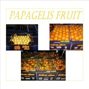PACΚING IN LEMONS,CLEMENTINES AND ORANGE