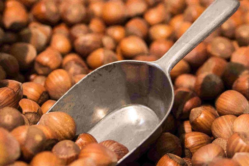 Handel und die Verarbeitung von Nüssen und Kernen in Bio-Qualität