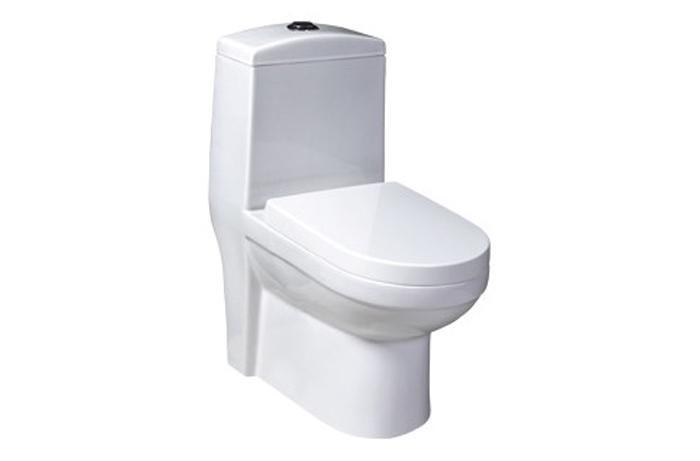 wc complet monobloc