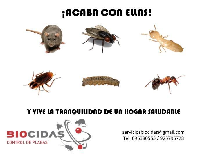 BIOCIDAS CONTROL DE PLAGAS, Expertos en Lucha Antivectorial.
