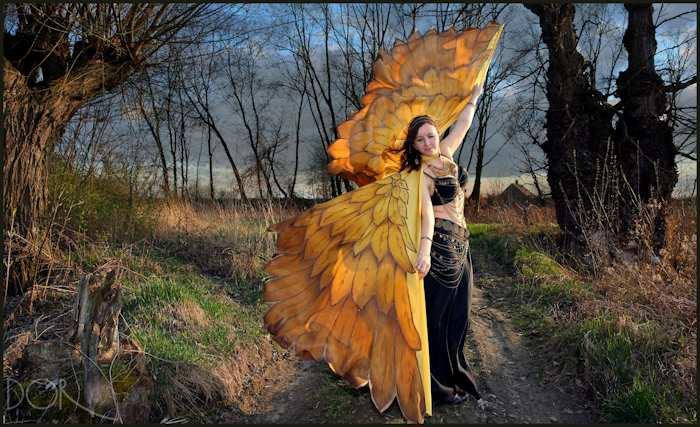 Silk gold birds dance wings