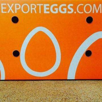 Carton d'exportation Exporteggs.com très solide