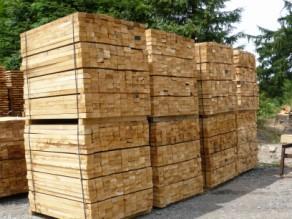 Chevrons chêne / rafters oak