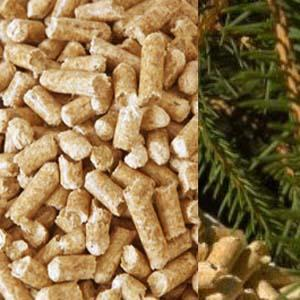 Our wood pellets are made from untreated pine wood. Using such fine raw material for our production assures very high quality of pellets with calorific value of 19.00 MJ/Kg ( 4,550 Kcal/Kg ).