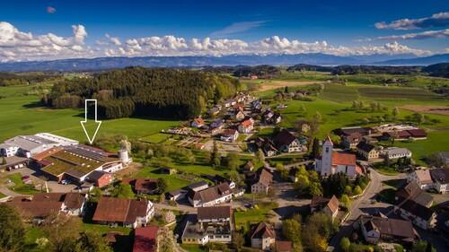 Holitsch am Bodensee