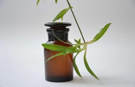 Arzneimittel und Verbandsstoffe