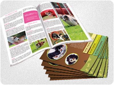 Brochures Reka Print. Impression numérique.