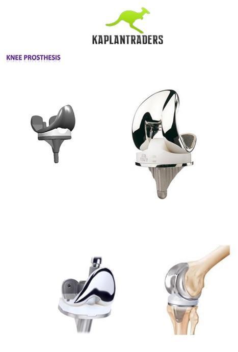 Knee Prosthesis