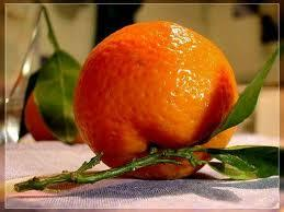 WE ARE EXPORTERS OF ORANGE FROM PAKISTAN