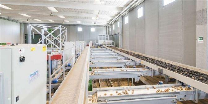 macchinari e attrezzatura all'avanguardia per lo stoccaggio, lavorazione e conservazione
