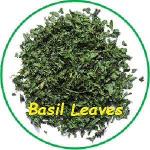 Basil Dried Leaves; (Ocimum bsilicum)