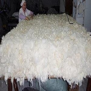 kg 25/28 lana inglese refino durata circa 20 years