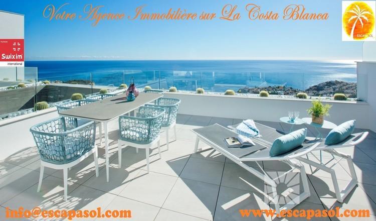 Real estate agency in Alicante