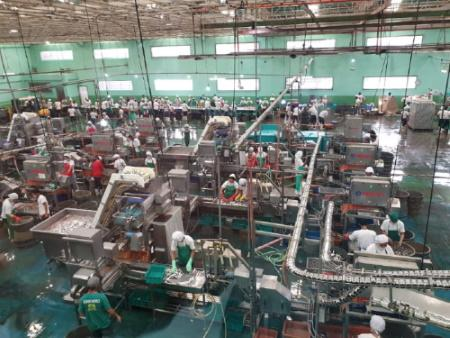 Turn-key fish processing factory