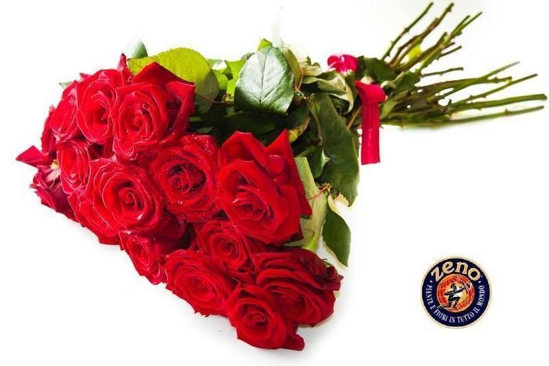 Importazione e distribuzione di fiori freschi, fogliame per decorazioni, piante.