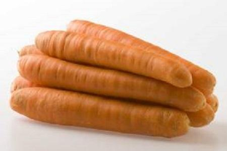 Carrots are supplied throughout almost the entire year.Available in sizes: B-carrots 50 – 250 gram   B-carrots 100-300 gram   C-carrots 200-400 gram   D-carrots 400-600 gram.