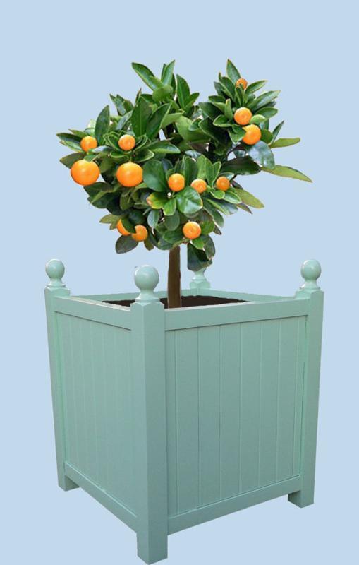 Bac orangerie en bois de châtaignier imputrescible, intérieur goudron. Bois naturel ou peint.