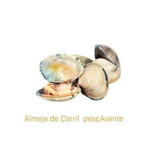 Almeja de carril de pescAvante marisco gallego