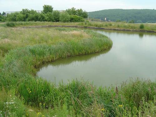 Fließgewässer