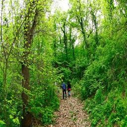 Soggiornare a Divinalux significa vivere immersi nella natura.