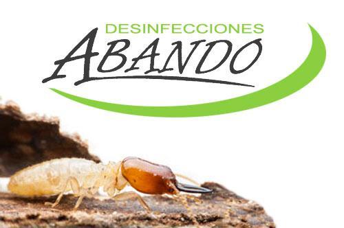 Empresa de eliminación de termitas en Bizkaia, Gipuzkoa, Álava, Cantabria, Burgos, Asturias, La Rioja, Navarra, Valladolid y Palencia. Empresa líder en tratamientos para eliminar termitas y carcoma.