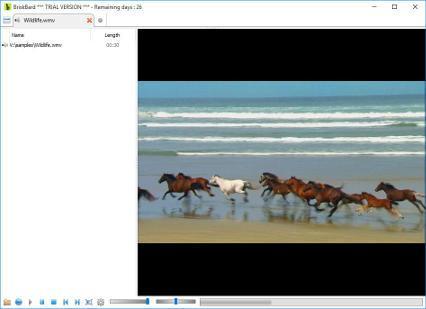 Reproductor multimedia de BriskBard