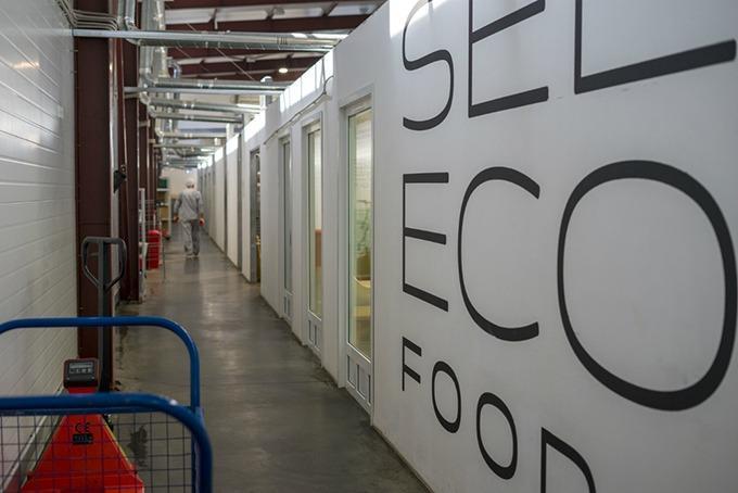 Main production corridor