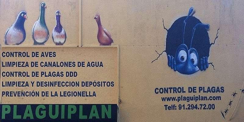 Servicios de control de plagas que presta nuestra empresa en la Comunidad de Madrid